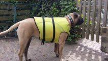 2015-02-08-mette-is-klaar-voor-haar-zwemles