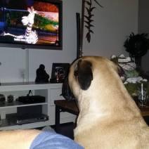 2015-12-26-tv-kijken-met-mette