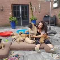 2016-06-26 Mette met haar pups