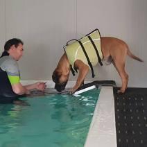 2017-02-03 Op zwemles